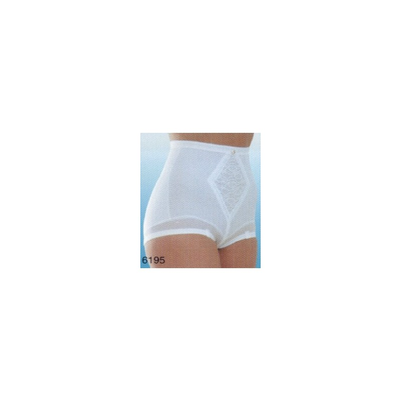 Rago 6195x Diet Minded Brief Panty The Bra Amp Girdle Factory